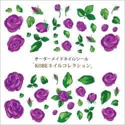 画像1: バラ/紫