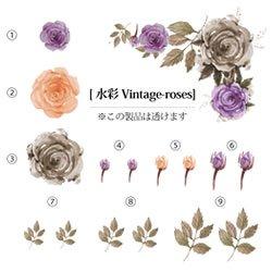 画像1: 水彩Vintage-roses